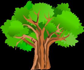 Oak Tree Clip Art (600x404)