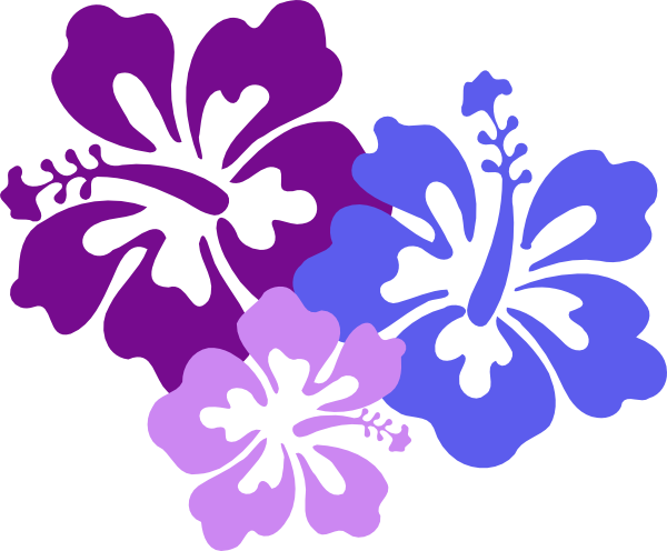 Hawaiian Flower Clip Art Borders Free Clipart Images - Hawaiian Flower Png (600x496)