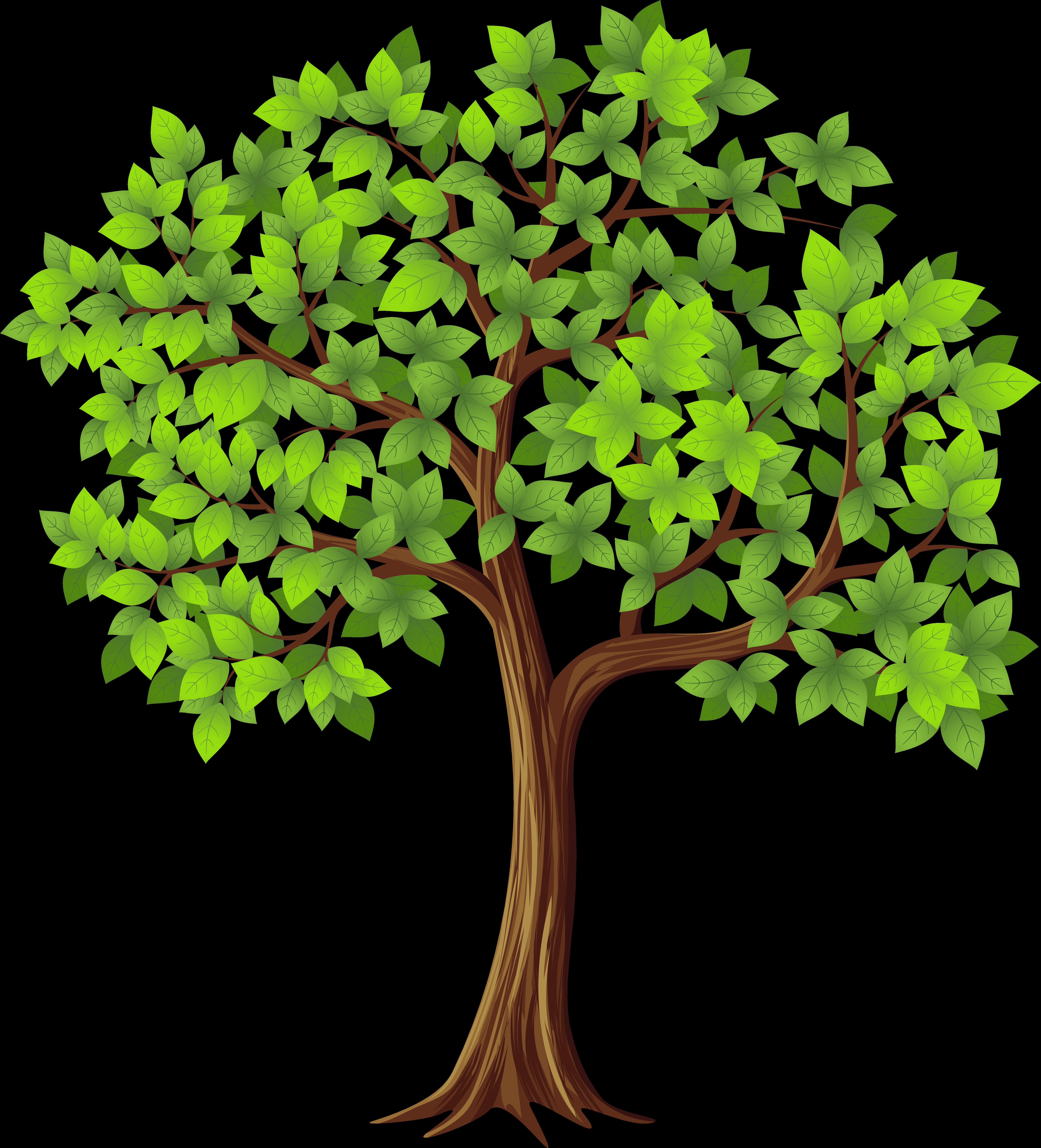 Днем, картинки для детей деревья летом
