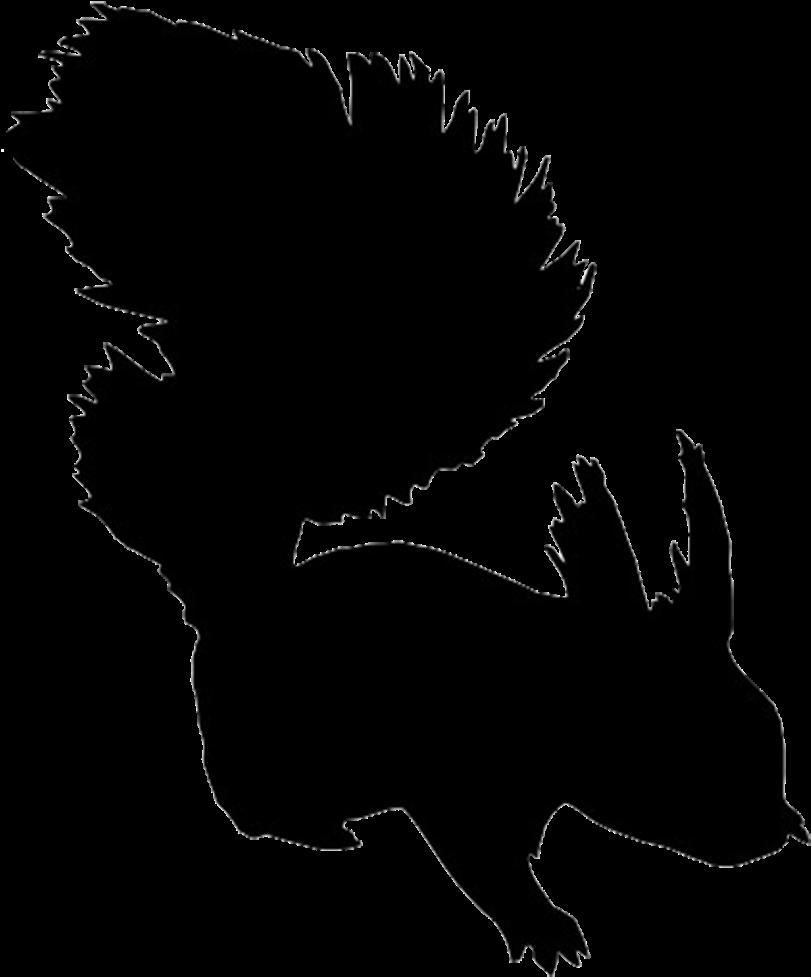 Silhouette Of Bear - Squirrel Silhouette Free Clip Art (832x1010)
