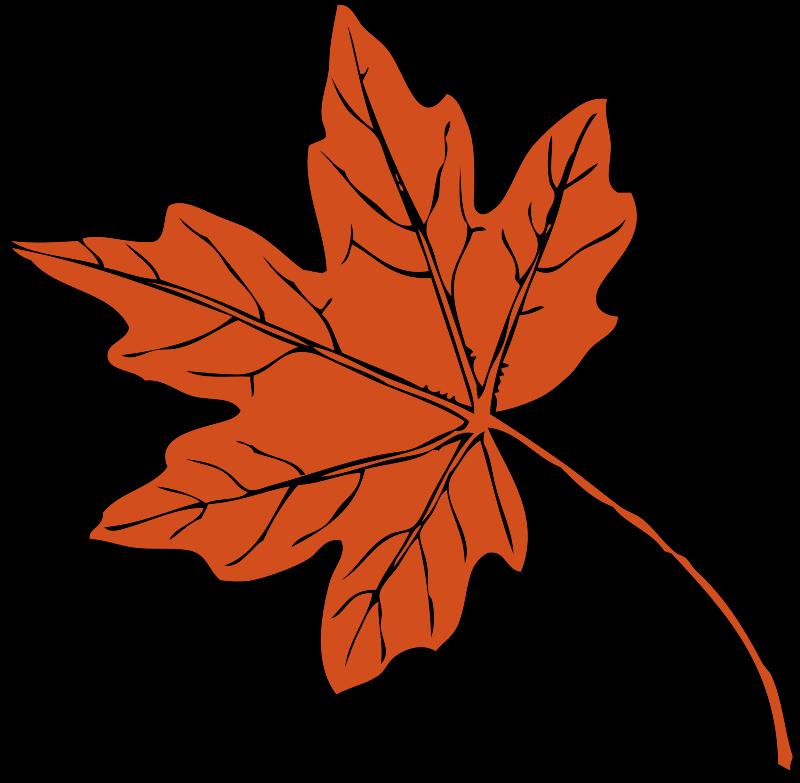 Thanksgiving Clip Art Free Christian - Fall Leaves Clip Art (800x783)