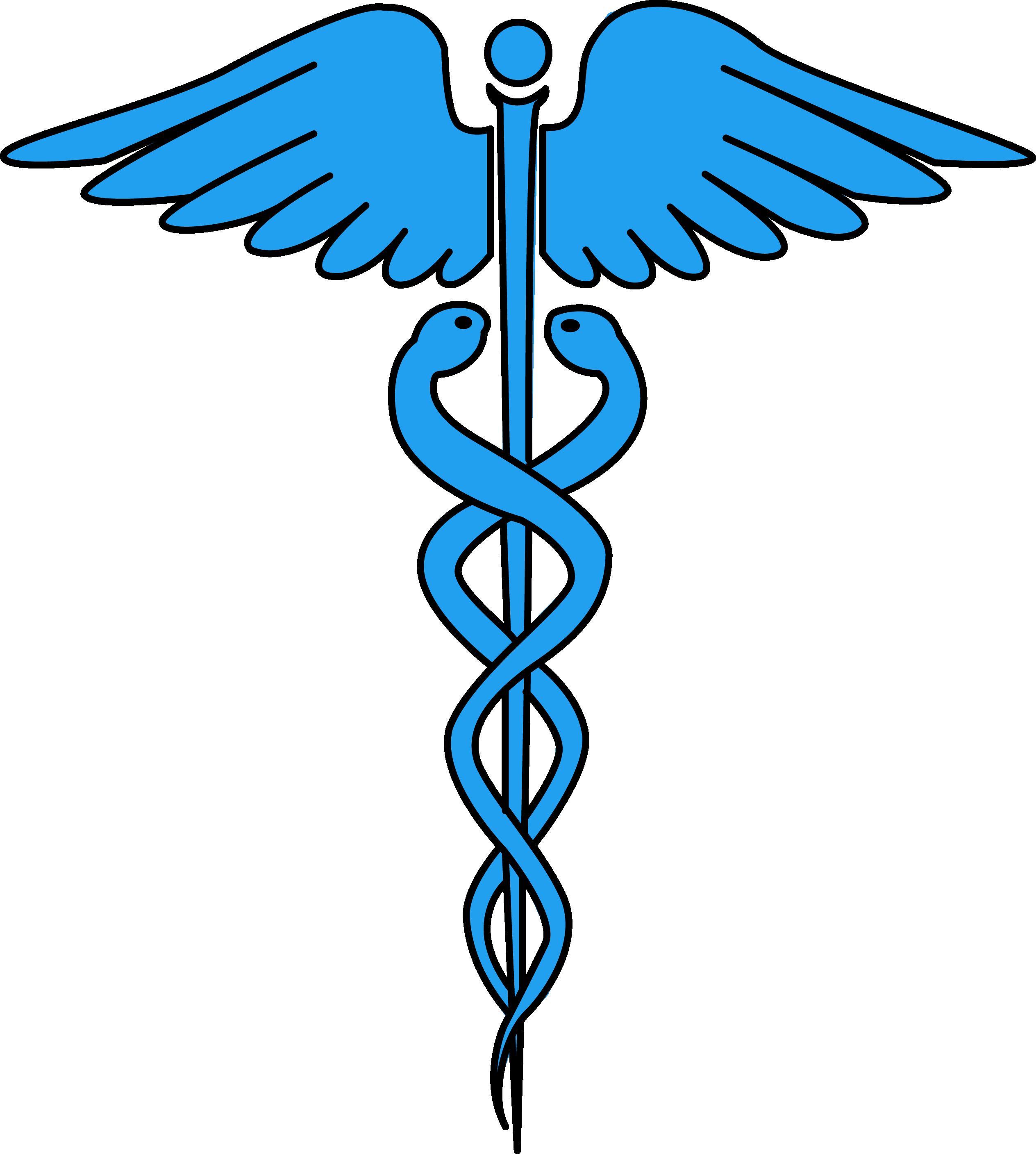 Image For Free Caduceus Medical Symbol Health High - Caduceus Medical Symbol (2528x2815)