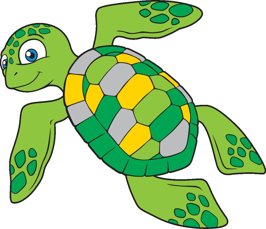 Картинки черепахи для детей нарисованные, поздравления днем