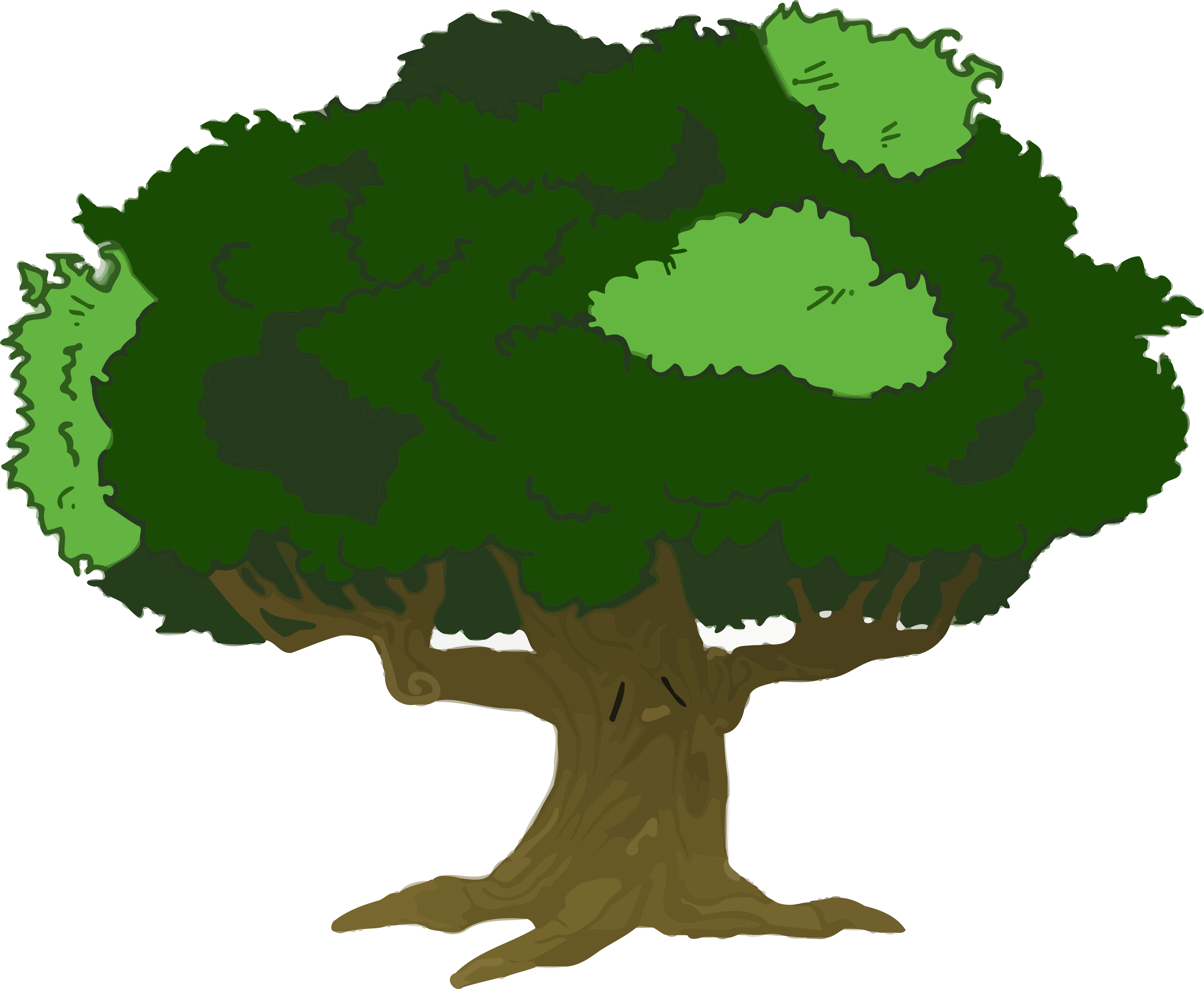 Tree Image Clip Art Online Royalty Free Clipart Png - Cartoon Tree With Branches (4161x3417)