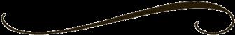 Simple Line Design Clipart Decorative Lines Png Clipart - Puma (370x370)