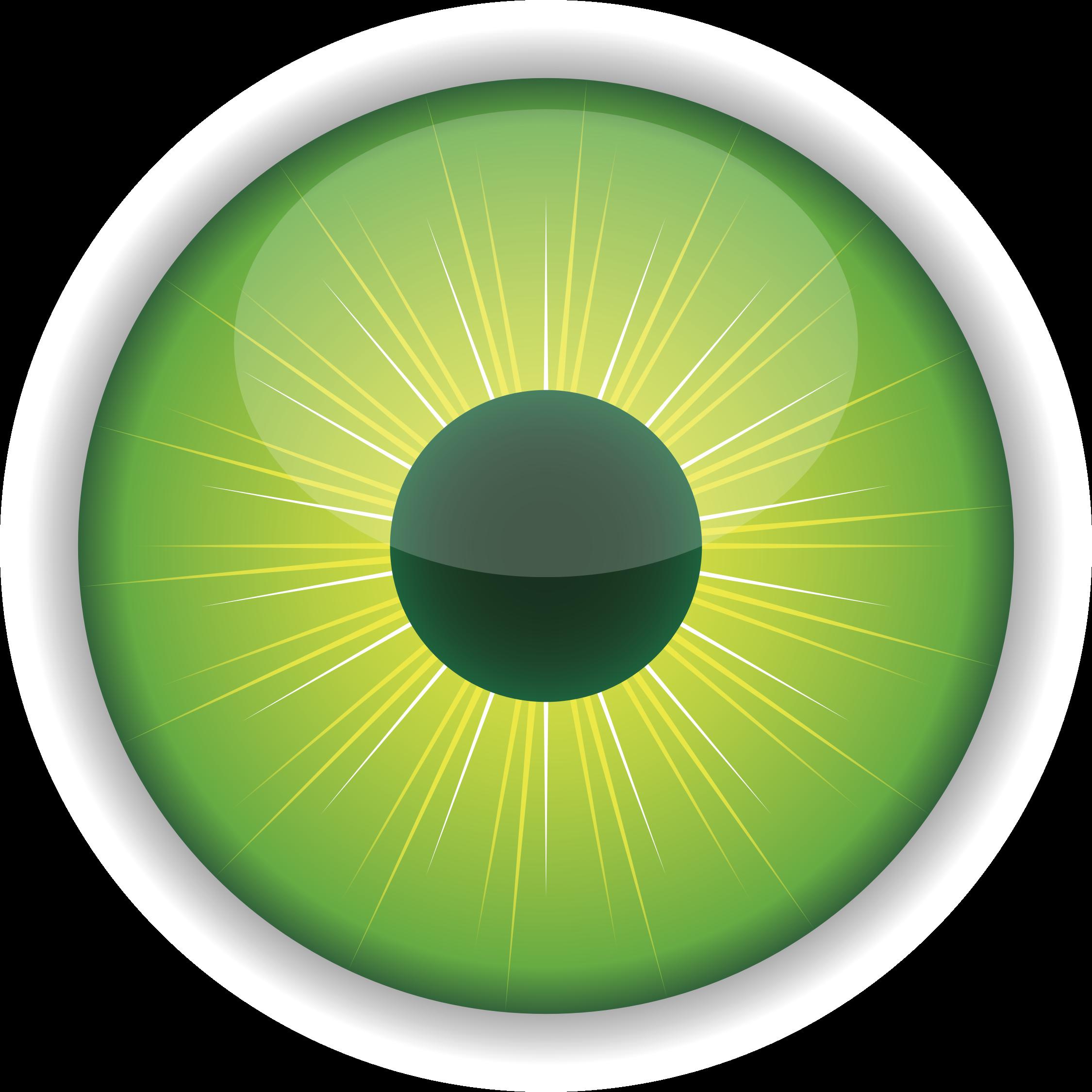 Pin Green Eyes Clipart - Eyeball Eye Iris Pupil Purple Human (2250x2250)