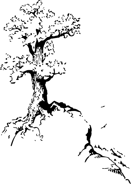 Top, Outline, Silhouette, Tree, Roots, White - Quotes About Trees Drawing (456x640)