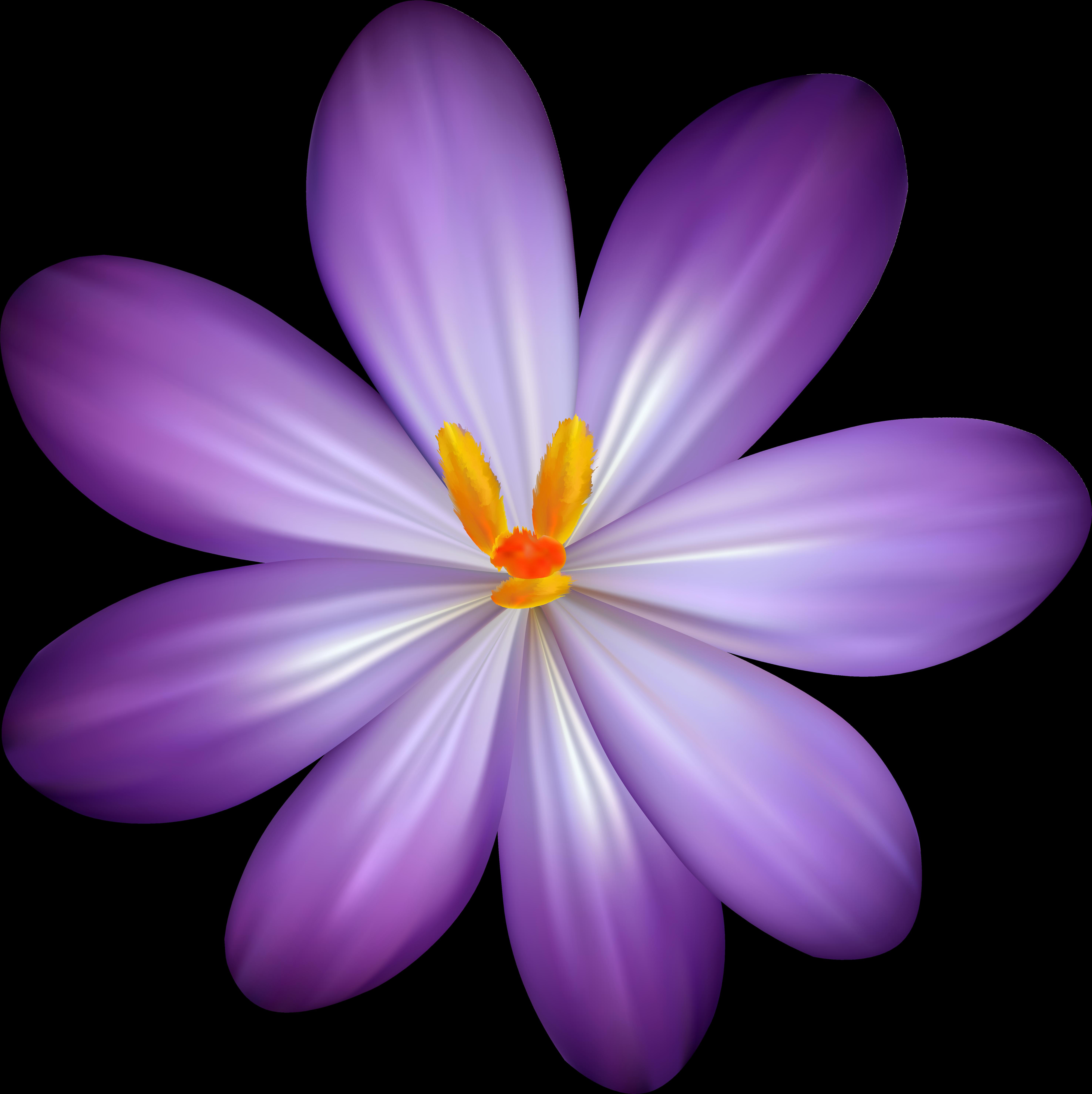 Цветок в пнг рисунок