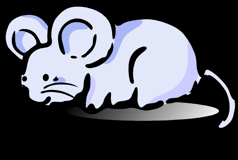 да, овца и мышь картинки билеты следующих пяти