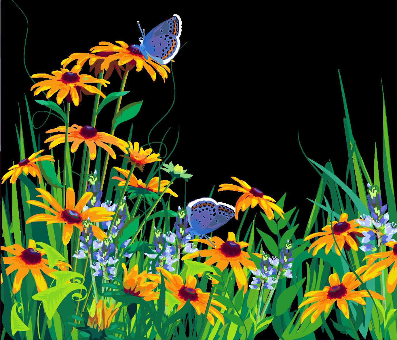 Для мамы, летние цветы картинки для детей на прозрачном фоне