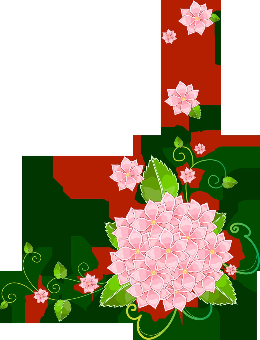 Открытка красивая, цветы для оформления открыток