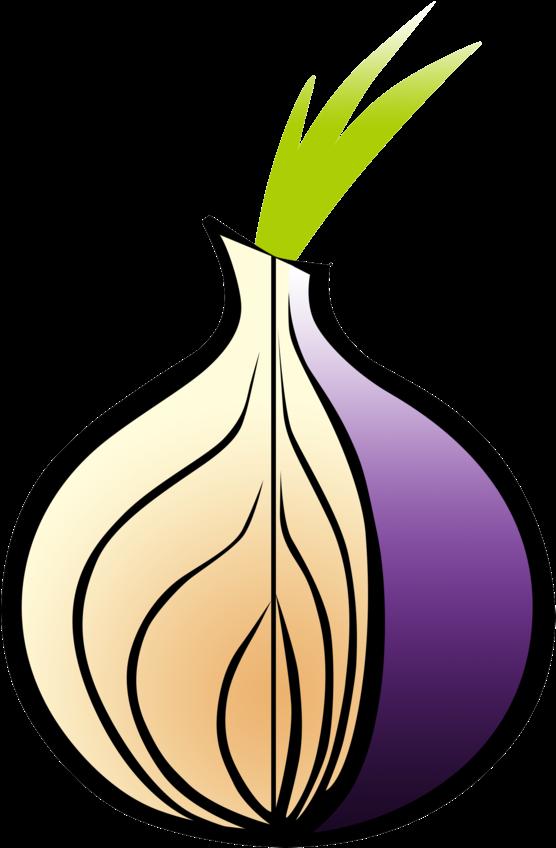 Tor browser look гидра правила работы с тор браузером hydra