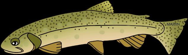Trout Clipart Trout Fish - Brown Trout (648x218)