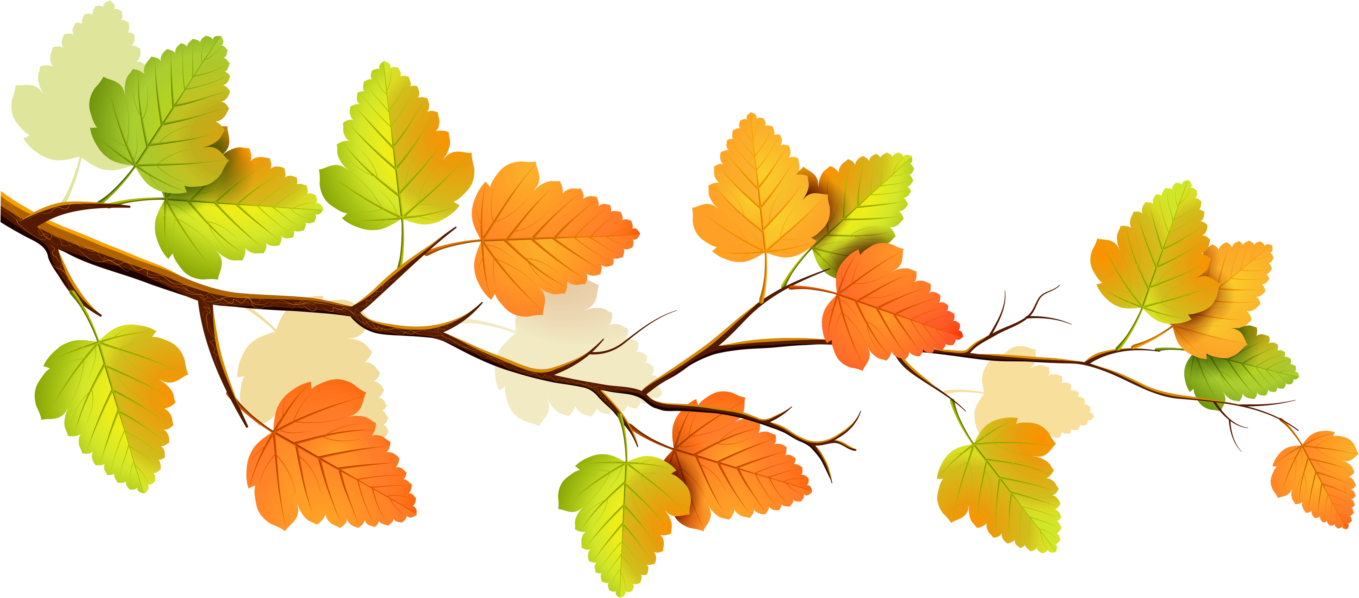 Fall - Autumn Png (5000x2261)