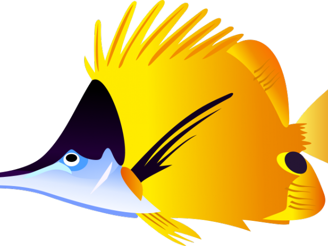 Pufferfish Clipart Colorful Tropical Fish - Colorful Fish Tile Coaster (640x480)