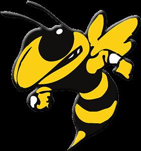 Georgia Tech Yellow Jackets (525x310)