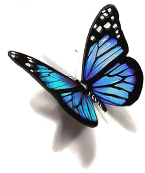 Blue Butterfly Png Photo - Butterfly Tattoo Design (400x400)