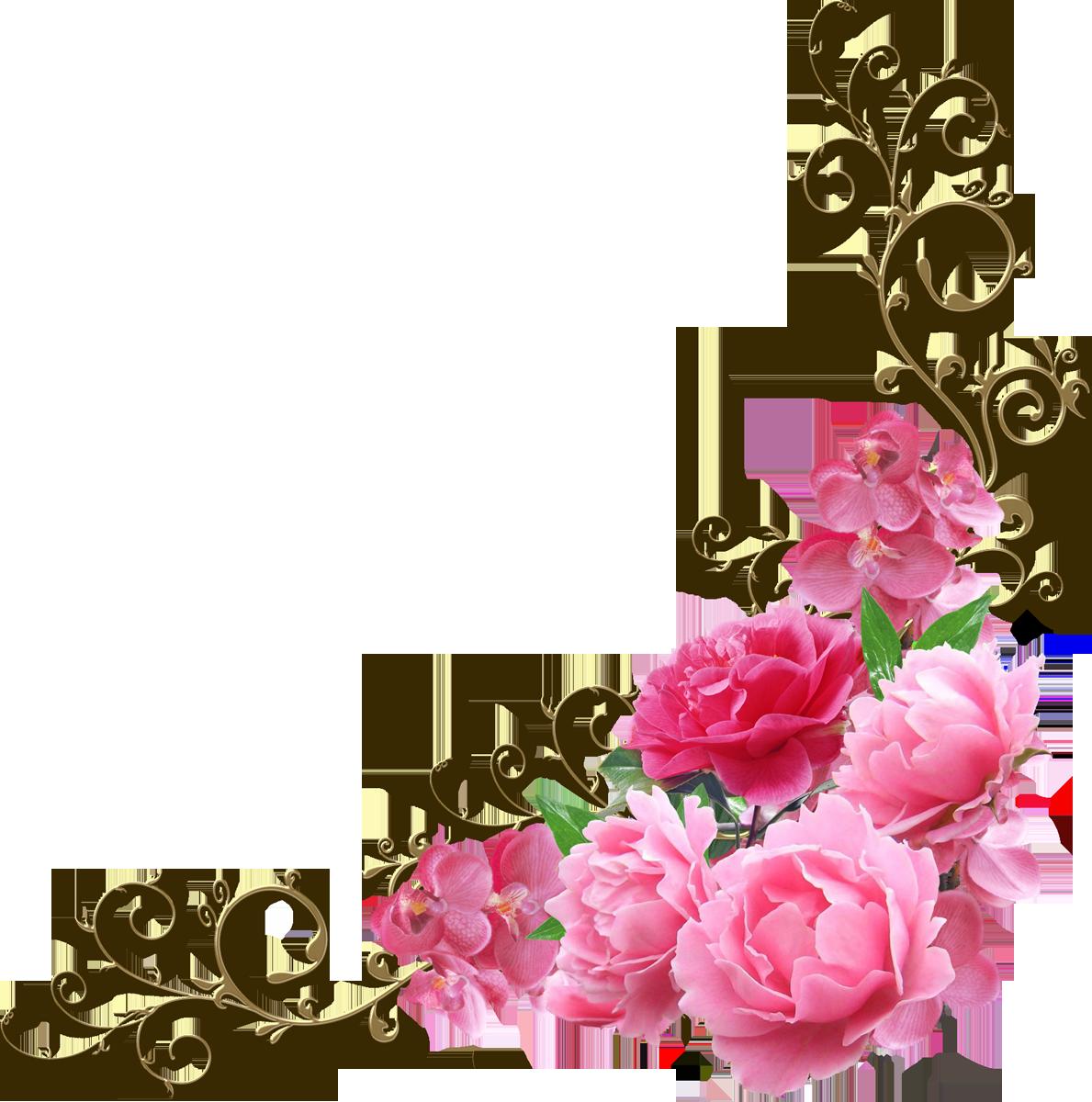 звезда, рамки и цветы в открытки уголки панорама уместна