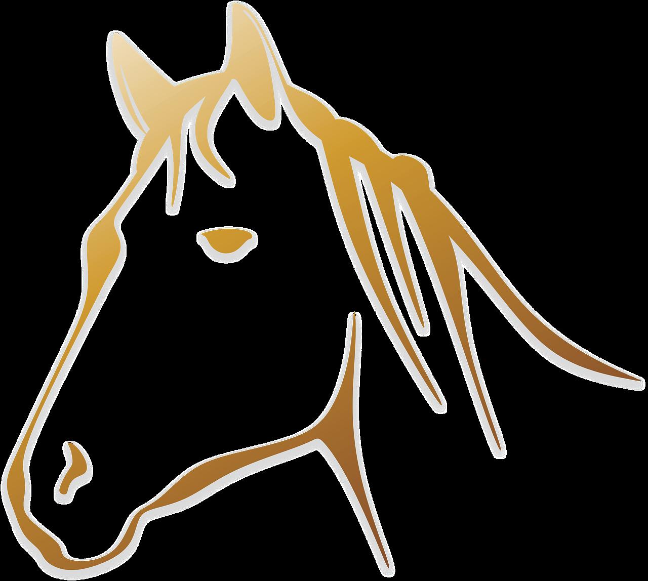 Horse Animal Horse Head Logo Image Gambar Sketsa