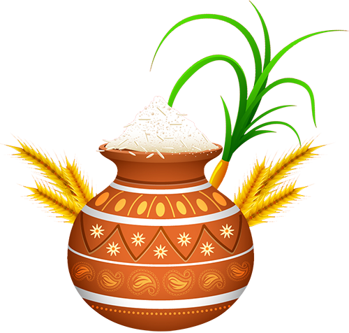 Pongal Festival Png (500x476)