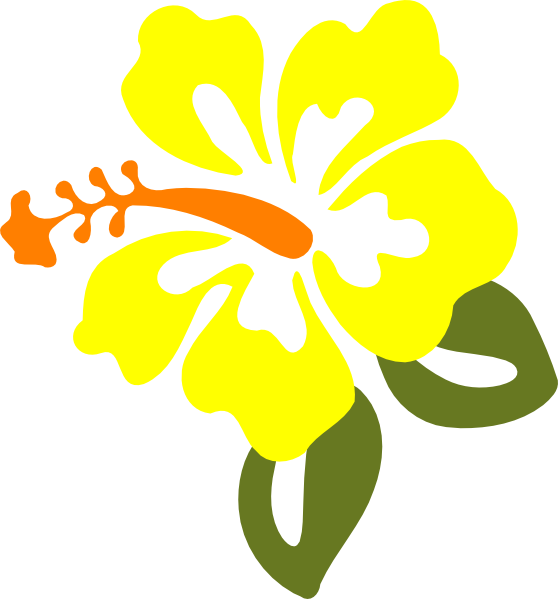 Yellow Hibiscus Clip Art At Vector Clip Art - Yellow Hibiscus Flower Clipart (558x599)