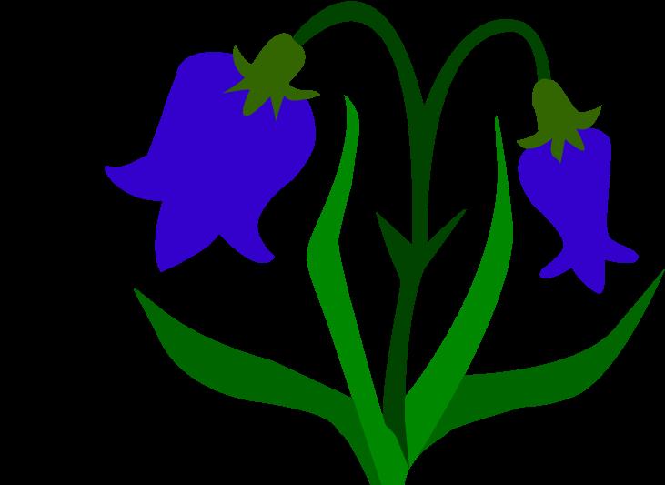 Картинки цветы колокольчики для детей, открытки все