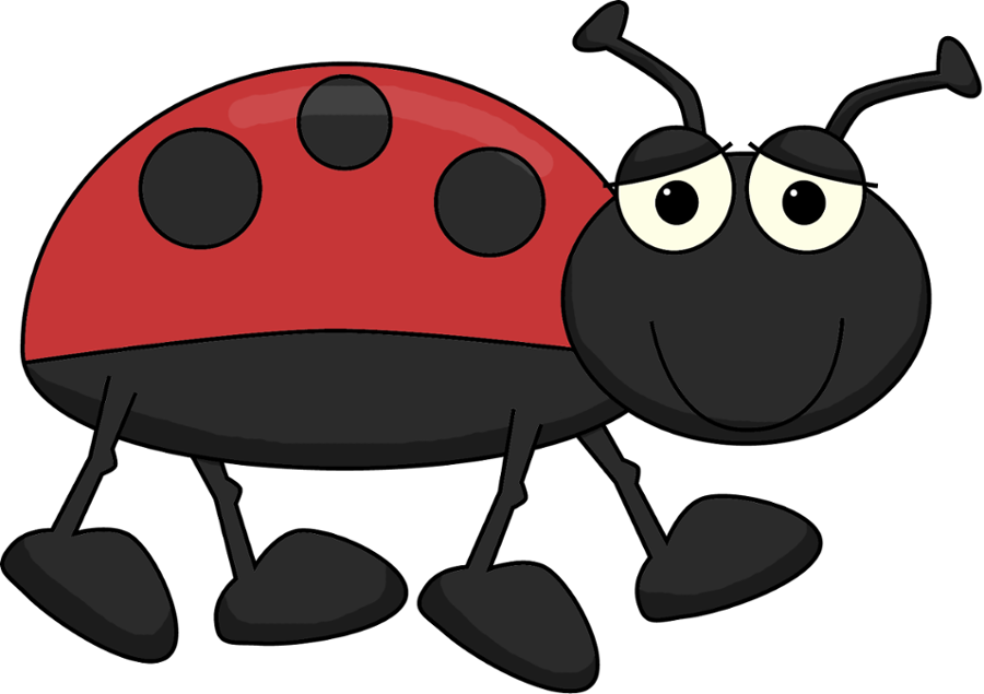 Jardim - Minus - Grouchy Ladybug Activities For First Grade (900x635)