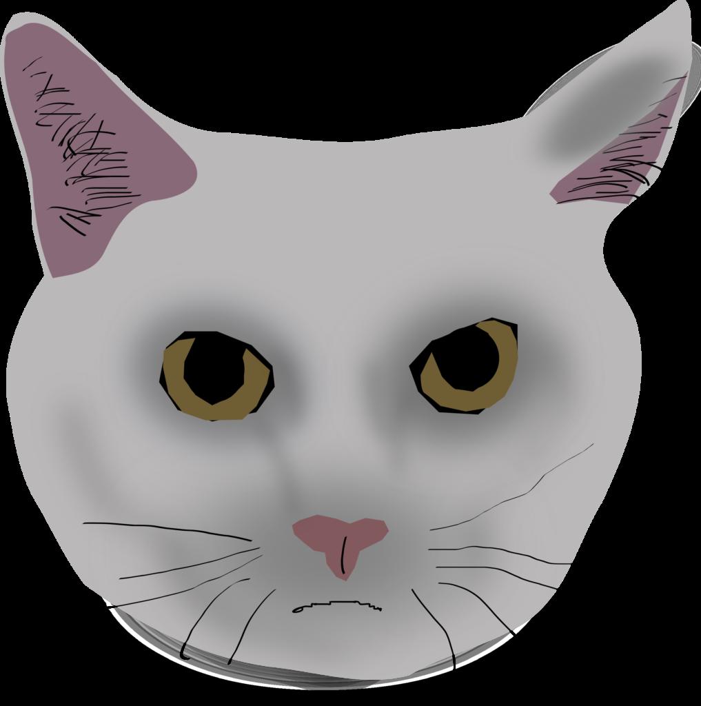 Смешные фото сфинксов кошек приходилось столько