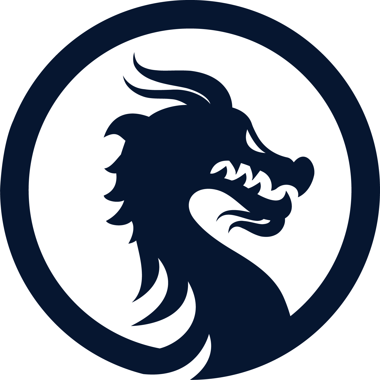 Dragon Logo Png - Dragon Logo Png (1514x1514)