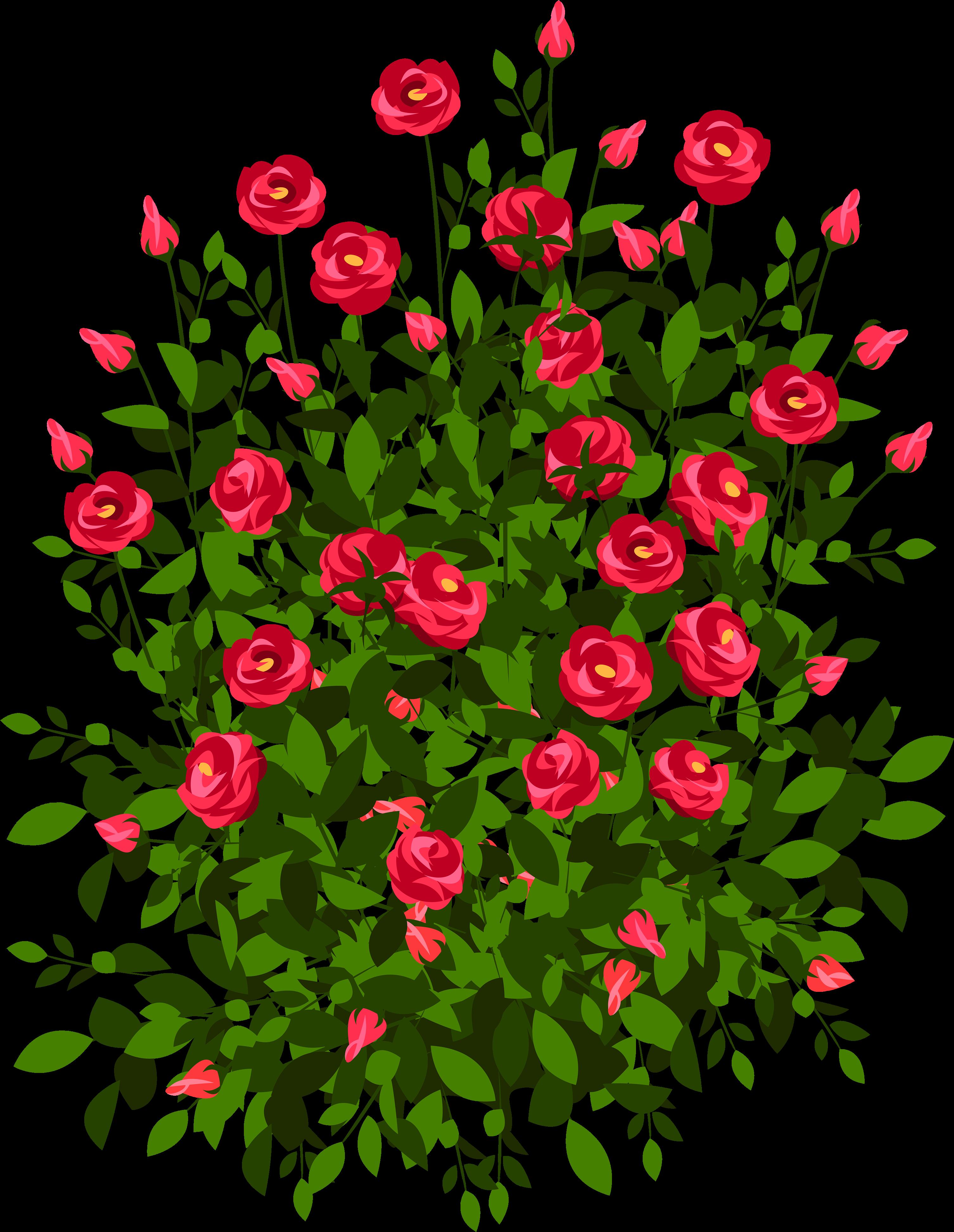 Самому, розы открытка пнг