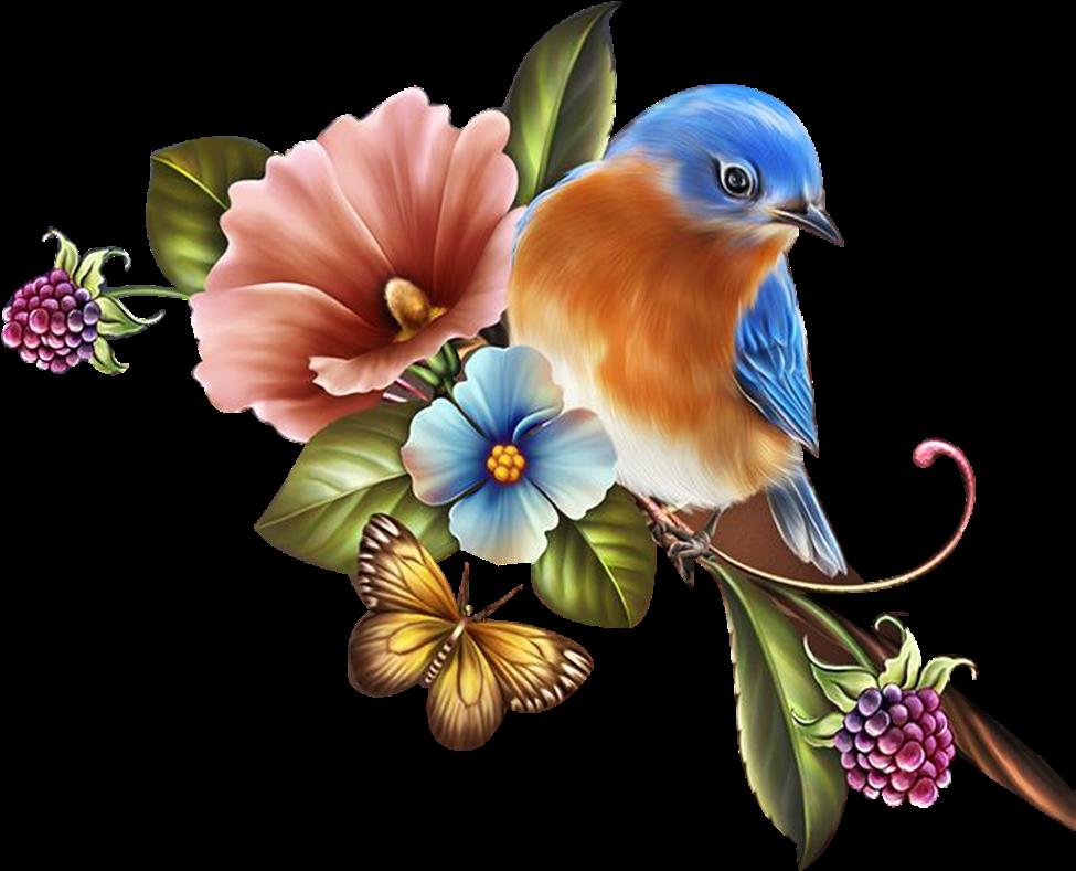 Открыток скрапбукинг, открытки бабочки птицы