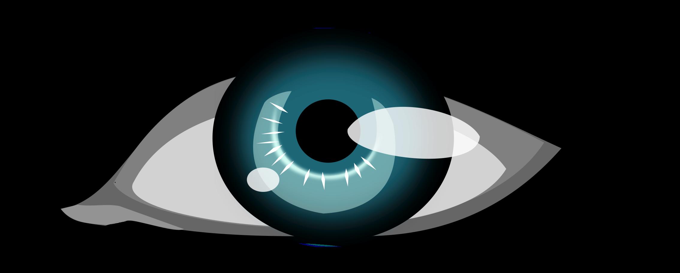 Illustration Of A Human Eye - Blue Eye Clip Art (2400x1267)