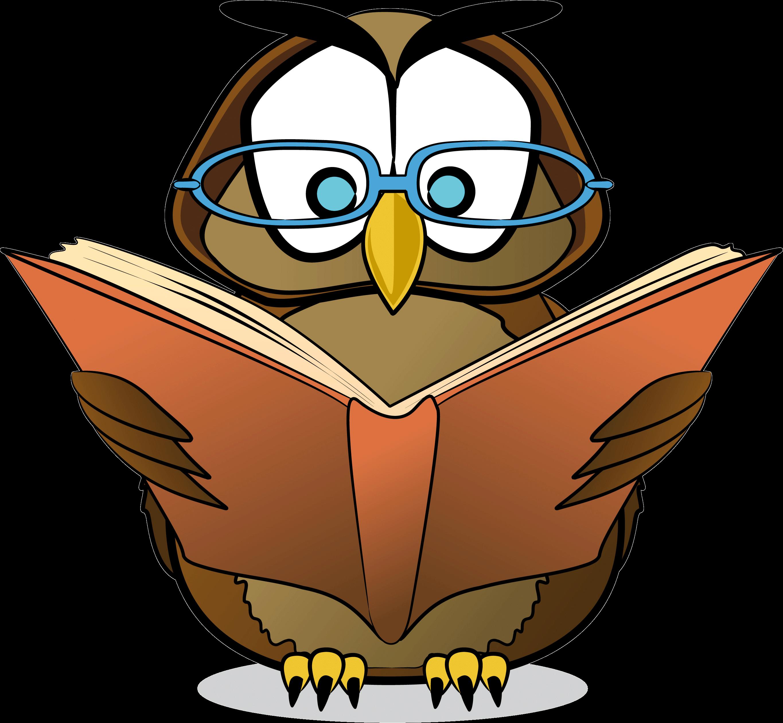 оригинальном картинка совы для урока обычно