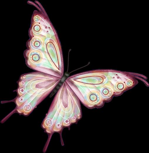 Бабочки анимация