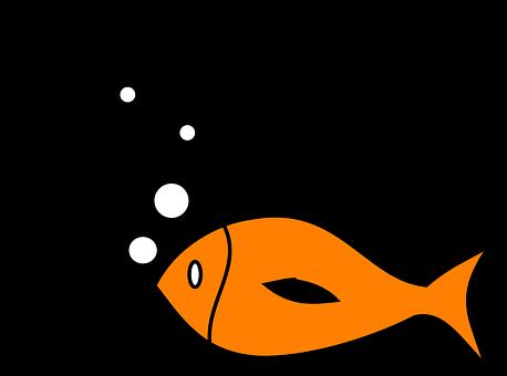 Fish Fishing Hook Bait Sport Lure Catch Li - Fish Hook And Fish (458x340)