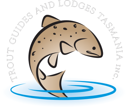 Trout Guides And Lodges Tasmania - Trout (406x342)
