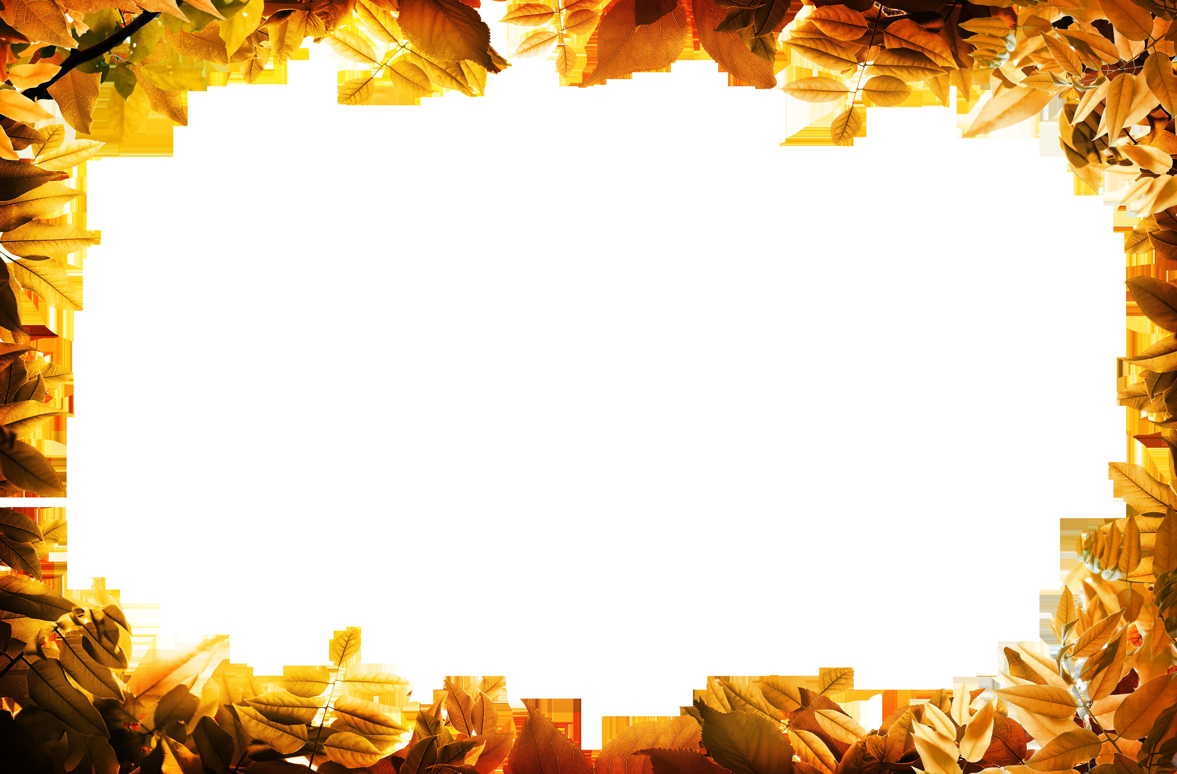 film frame leaf autumn clip art leaves oarange border png