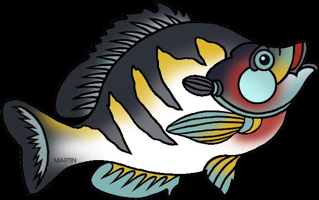 State Fish Of Illinois - Illinois State Fish Bluegill (648x426)