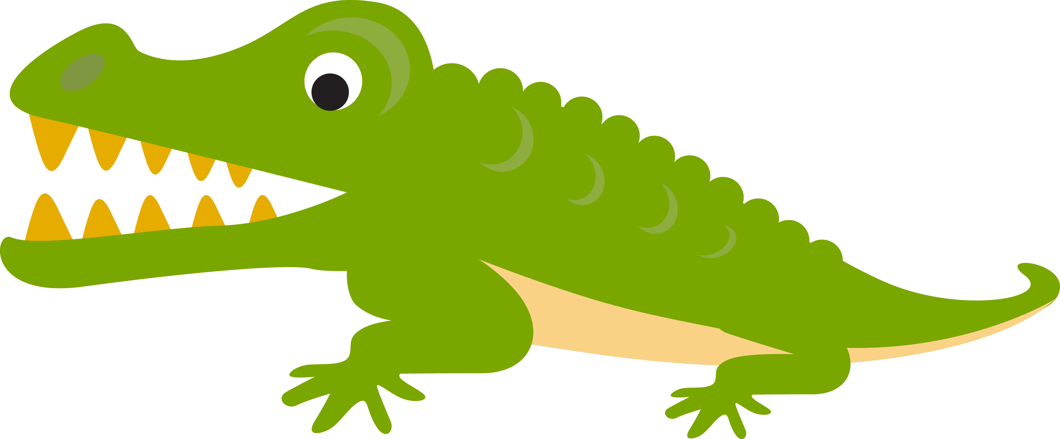 Alligator Crocodile Cartoon Illustration - Crocodile Cartoon Png (3568x1479)