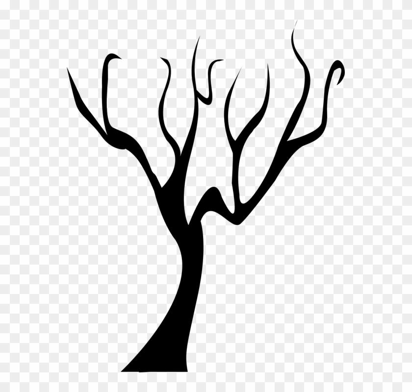 Tree Dead Tree Branch Black Winter Bare - Tree Dead Tree Branch Black Winter Bare #100