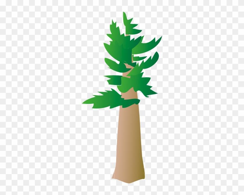Free Vector White Pine Tree Clip Art - Pine #993