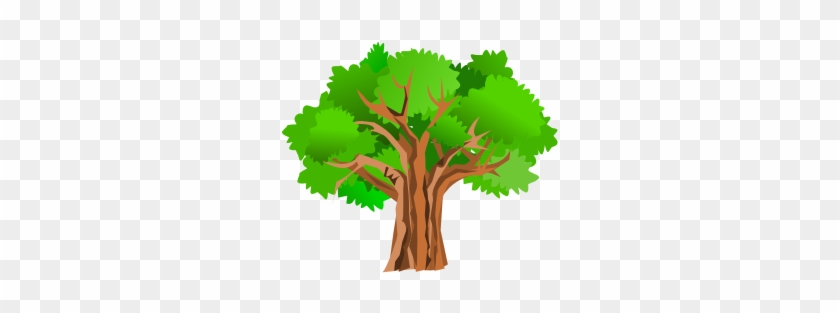 Oak Tree Clip Art #1081