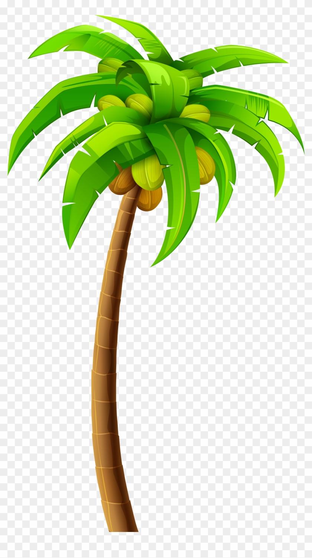 Palm Png Clip Art - Palm Png Clip Art #143