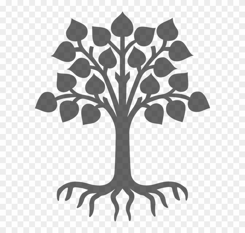 Plant Silhouette Grey Tree Leaves Wood Roots - Plant Silhouette Grey Tree Leaves Wood Roots #125
