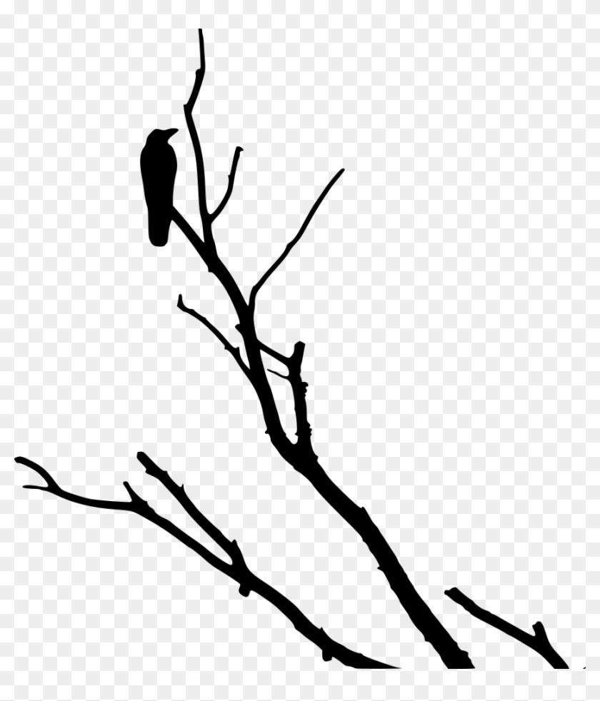 Crow On Dead Tree - Crow On Dead Tree #1262
