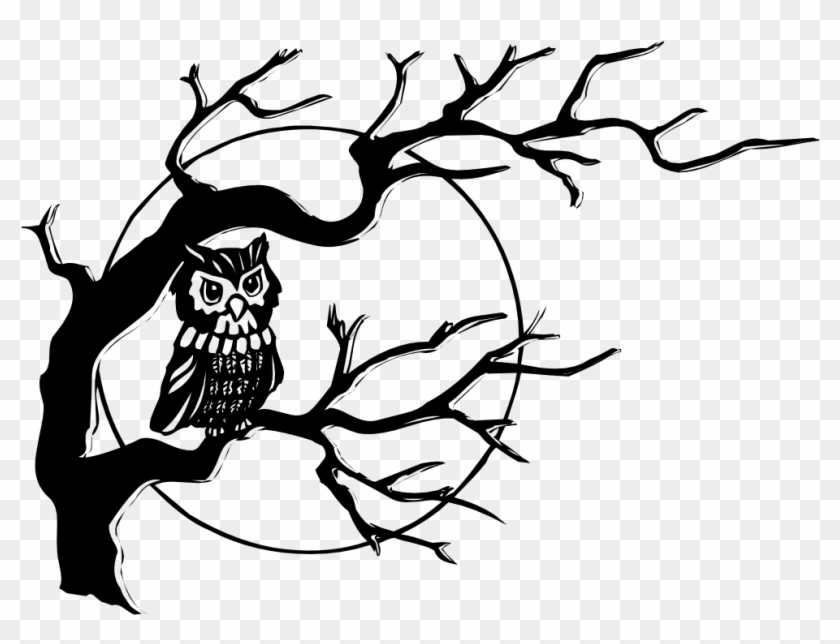 Clip Art Details - Owl On A Tree Drawing #1266