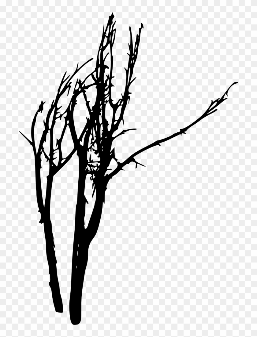 Dead Tree Silhouette Clip Art - Portable Network Graphics #1282