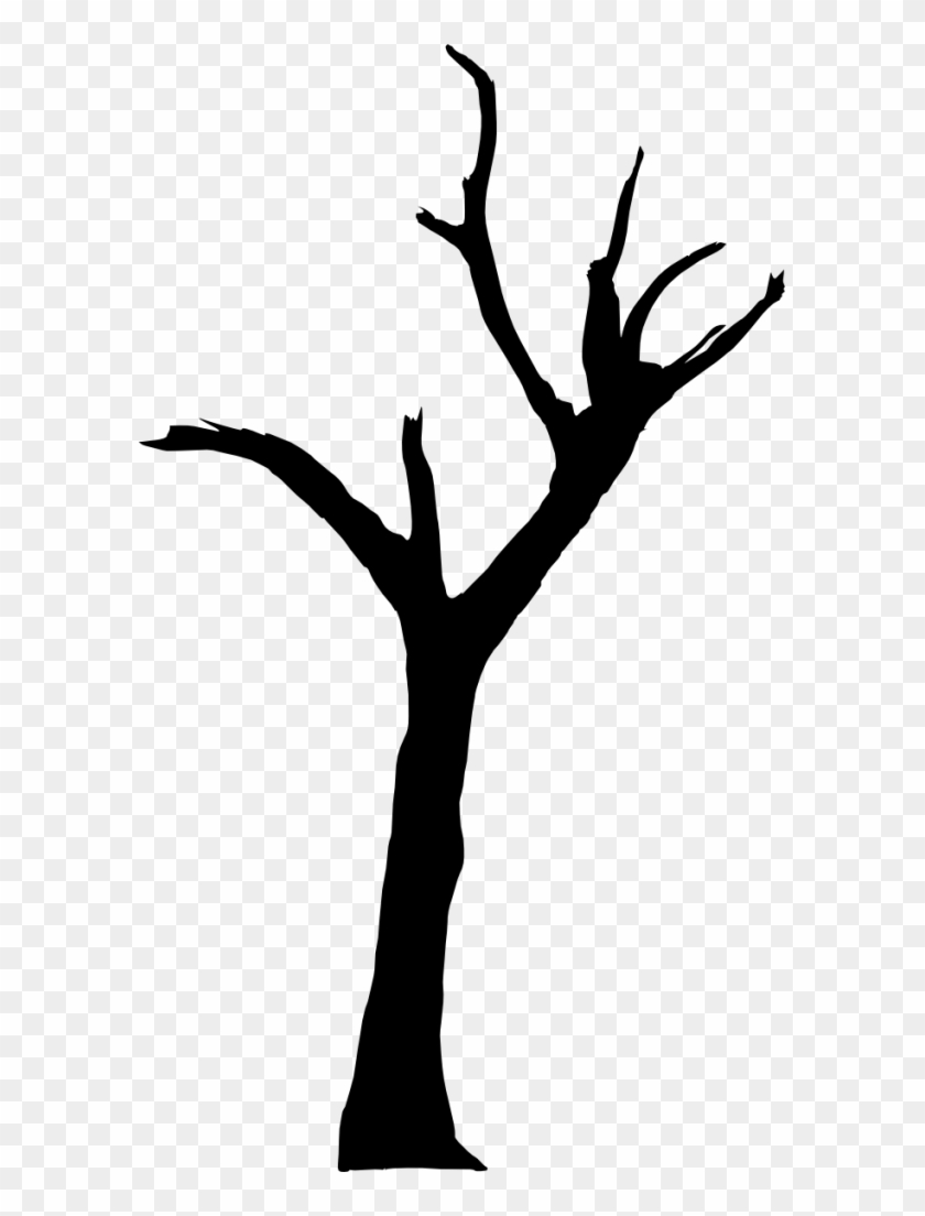 10 Spooky Dead Tree Silhouette Vol - Deadvlei #1287