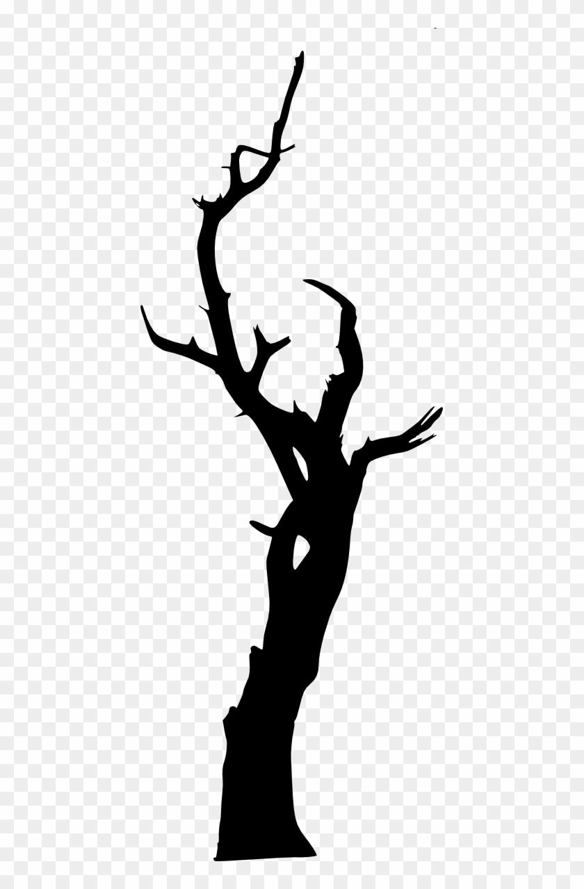 Free Download - Tree #1352
