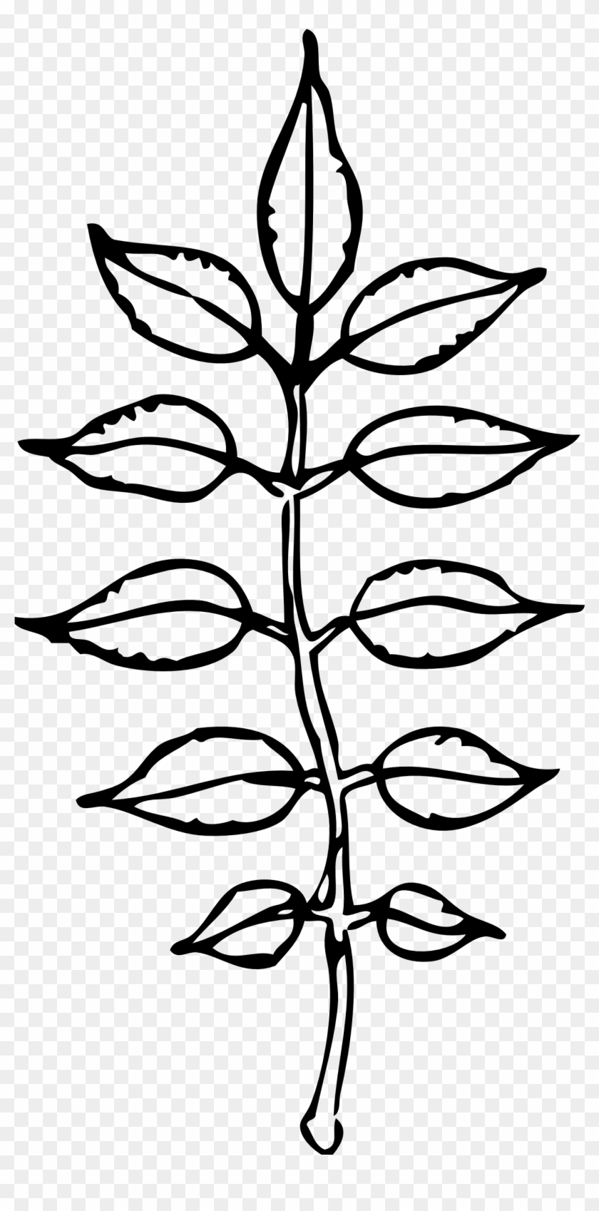 Leaves Black And White Pile Leaves Clip Art Black And - Leaves Black And White Pile Leaves Clip Art Black And #1408